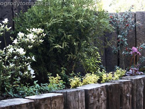 ogrody tomszak wodzislaw010