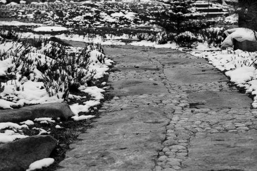 ogrodytomszak Bielsko Biala Mikuszowice oczko wodne kamien naturalny avant formowanie terenu 28