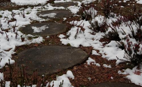 ogrodytomszak Bielsko Biala Mikuszowice oczko wodne kamien naturalny avant formowanie terenu 30