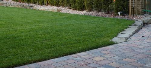ogrodytomszak buczkowice trawnik mur nawodnienie 02