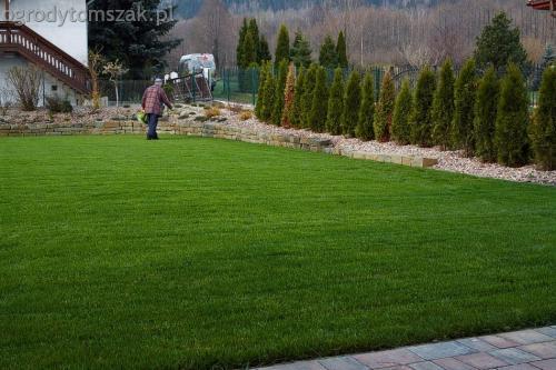 ogrodytomszak buczkowice trawnik mur nawodnienie 03