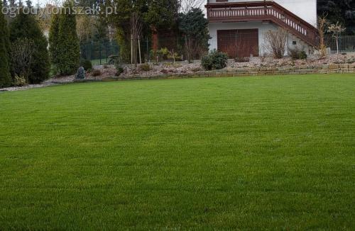 ogrodytomszak buczkowice trawnik mur nawodnienie 04