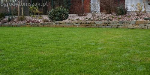 ogrodytomszak buczkowice trawnik mur nawodnienie 07