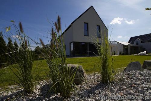 Międzyrzecze - ogród nowoczesny, trawnik z siatką na kreta, bruki