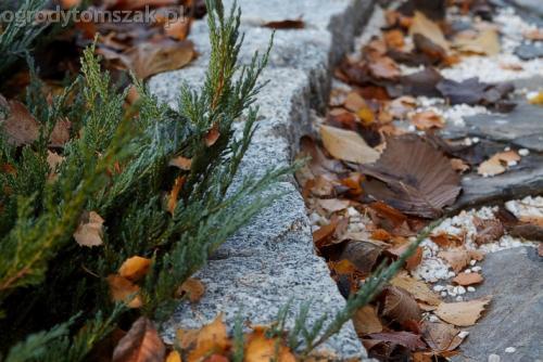 ogrodytomszak murki skalniaki obrzeza granitowe ogrodnik bielsko biala 11