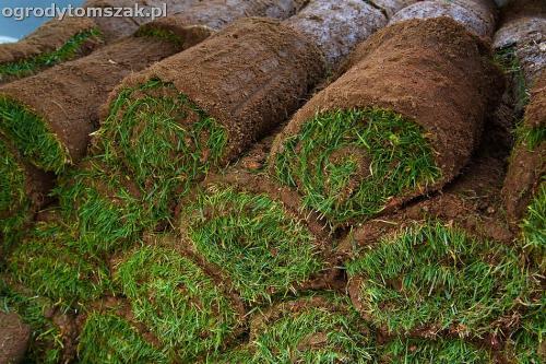 Szczyrk - trawnik z rolki