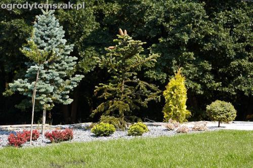 wilkowice mikuszowice lodygowice bystra ogrod murki piaskowiec trawnik schody piwniczka formowanie terenu skarpy IMG 7671