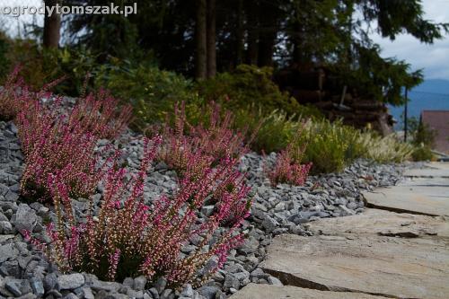 wilkowice mikuszowice lodygowice bystra ogrod murki piaskowiec trawnik schody piwniczka formowanie terenu skarpy IMG 8055