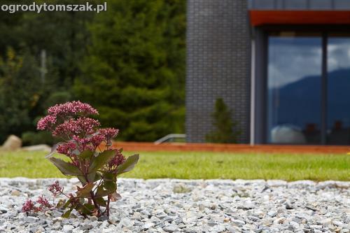 wilkowice mikuszowice lodygowice bystra ogrod murki piaskowiec trawnik schody piwniczka formowanie terenu skarpy IMG 8101