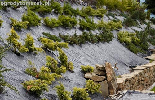 wilkowice mikuszowice lodygowice bystra ogrod murki piaskowiec trawnik schody piwniczka formowanie terenu skarpy IMG 8121