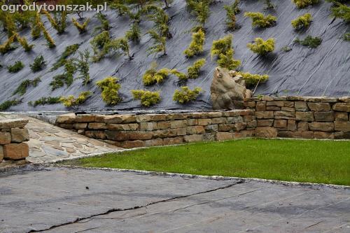 wilkowice mikuszowice lodygowice bystra ogrod murki piaskowiec trawnik schody piwniczka formowanie terenu skarpy IMG 8124