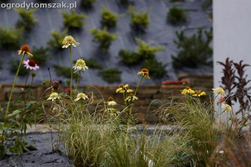 wilkowice mikuszowice lodygowice bystra ogrod murki piaskowiec trawnik schody piwniczka formowanie terenu skarpy IMG 8143
