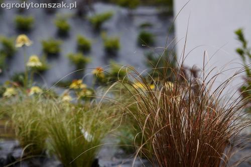 wilkowice mikuszowice lodygowice bystra ogrod murki piaskowiec trawnik schody piwniczka formowanie terenu skarpy IMG 8144