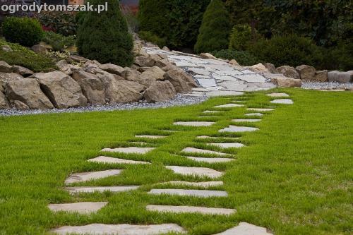 Buczkowice - zieleń towarzysząca, pod przychodnią