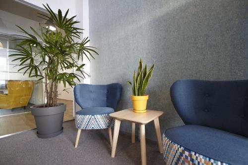 zielen w biurze biophilic design IMG 7337